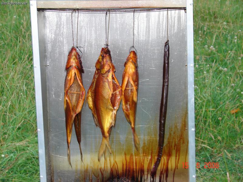 рыба толстолобик рецепты приготовления